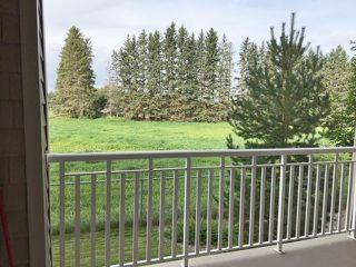 Photo 11: 118 511 Queen Street: Spruce Grove Condo for sale : MLS®# E4193160