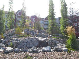 Photo 17: 118 511 Queen Street: Spruce Grove Condo for sale : MLS®# E4193160