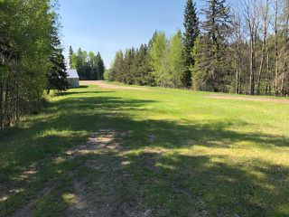 Photo 4: : Rural Parkland County House for sale : MLS®# E4195144