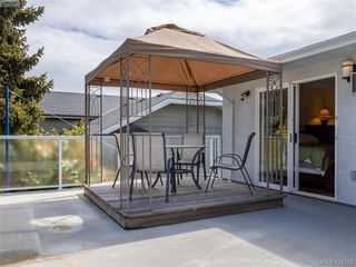Photo 19: 3997 San Mateo Pl in VICTORIA: SE Gordon Head House for sale (Saanich East)  : MLS®# 838777