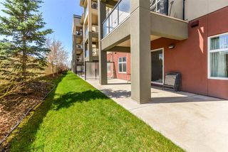 Photo 19: 136 7825 71 Street in Edmonton: Zone 17 Condo for sale : MLS®# E4196123