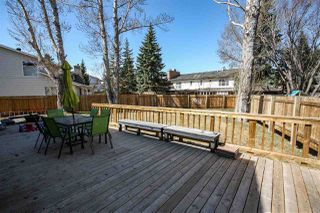 Photo 44: 165 Willow Way in Edmonton: Zone 22 House for sale : MLS®# E4196310