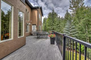 Photo 46: 72 DISCOVERY VALLEY Cove SW in Calgary: Discovery Ridge Detached for sale : MLS®# A1020097