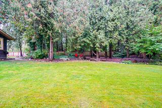 "Photo 34: 15403 KILKEE Place in Surrey: Sullivan Station House for sale in ""Sullivan Station"" : MLS®# R2502571"