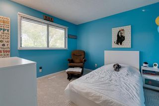 Photo 20: 151 Millrise Drive SW in Calgary: Millrise Detached for sale : MLS®# A1037985