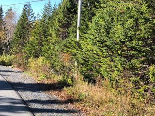 Photo 5: 24 Shannon Road in Brookside: 40-Timberlea, Prospect, St. Margaret`S Bay Vacant Land for sale (Halifax-Dartmouth)  : MLS®# 202022888