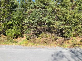 Photo 3: 24 Shannon Road in Brookside: 40-Timberlea, Prospect, St. Margaret`S Bay Vacant Land for sale (Halifax-Dartmouth)  : MLS®# 202022888