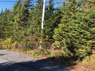 Photo 1: 24 Shannon Road in Brookside: 40-Timberlea, Prospect, St. Margaret`S Bay Vacant Land for sale (Halifax-Dartmouth)  : MLS®# 202022888