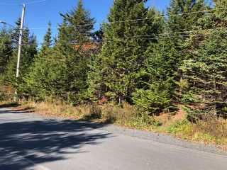 Photo 4: 24 Shannon Road in Brookside: 40-Timberlea, Prospect, St. Margaret`S Bay Vacant Land for sale (Halifax-Dartmouth)  : MLS®# 202022888