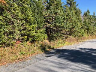 Photo 2: 24 Shannon Road in Brookside: 40-Timberlea, Prospect, St. Margaret`S Bay Vacant Land for sale (Halifax-Dartmouth)  : MLS®# 202022888