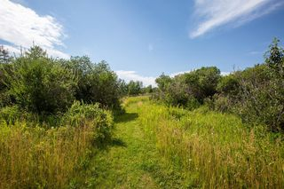 Photo 49:  in Rural Rocky View County: Rural Rocky View MD Detached for sale : MLS®# A1018198