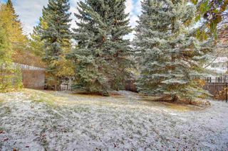 Photo 5: 4123 ASPEN Drive W in Edmonton: Zone 16 House for sale : MLS®# E4218407