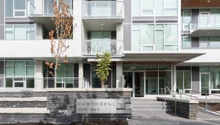 """Photo 14: 205 4988 CAMBIE Street in Vancouver: Cambie Condo for sale in """"Hawthorne"""" (Vancouver West)  : MLS®# R2518384"""
