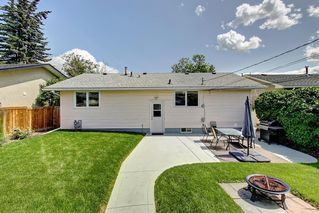 Photo 21: 3111 RAE Crescent SE in Calgary: Albert Park/Radisson Heights Detached for sale : MLS®# C4258934
