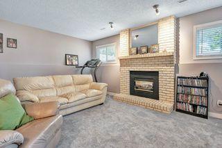 Photo 16: 3619 146 Avenue in Edmonton: Zone 35 House for sale : MLS®# E4168063