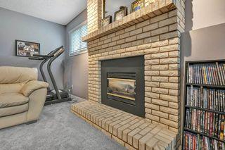 Photo 19: 3619 146 Avenue in Edmonton: Zone 35 House for sale : MLS®# E4168063