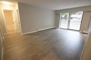 Main Photo: 4 2439 KELLY Avenue in Port Coquitlam: Central Pt Coquitlam Condo for sale : MLS®# R2411119