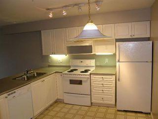 Photo 4: 408 22230 NORTH AVENUE in Maple Ridge: Home for sale : MLS®# V935346