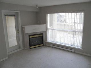 Photo 6: 408 22230 NORTH AVENUE in Maple Ridge: Home for sale : MLS®# V935346