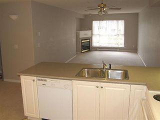 Photo 5: 408 22230 NORTH AVENUE in Maple Ridge: Home for sale : MLS®# V935346