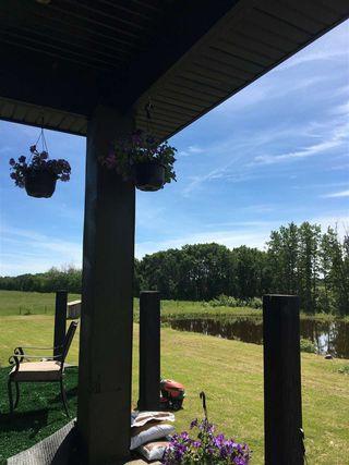Photo 47: 48301 RR 263: Rural Leduc County House for sale : MLS®# E4215534