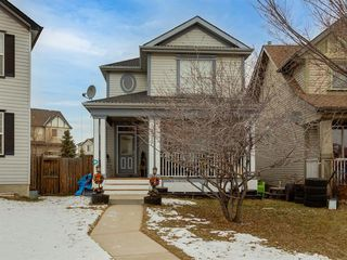 Main Photo: 133 Copperfield Grove SE in Calgary: Copperfield Detached for sale : MLS®# A1055840
