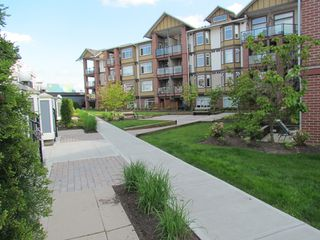 """Photo 14: #275 20170 FRASER HWY in LANGLEY: Langley City Townhouse for rent in """"PADDINGTON STATION"""" (Langley)"""