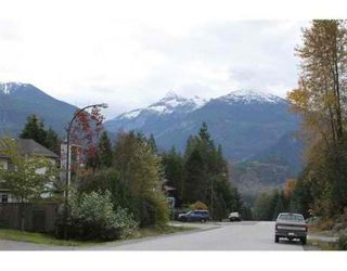 Photo 8: 40738 THUNDERBIRD RIDGE in Squamish: Garibaldi Highlands House for sale : MLS®# V857021