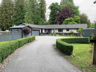 Main Photo: 21775 RIDGEWAY Crescent in Maple Ridge: West Central House for sale : MLS®# R2394745