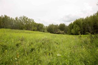 Photo 3: 73 52528 RR 191: Rural Beaver County Rural Land/Vacant Lot for sale : MLS®# E4168580