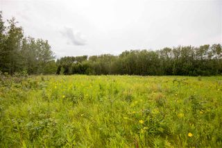 Photo 2: 73 52528 RR 191: Rural Beaver County Rural Land/Vacant Lot for sale : MLS®# E4168580