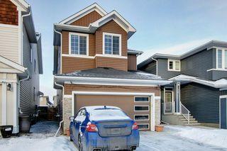 Photo 33: 52 REDSTONE Drive NE in Calgary: Redstone Detached for sale : MLS®# C4281360