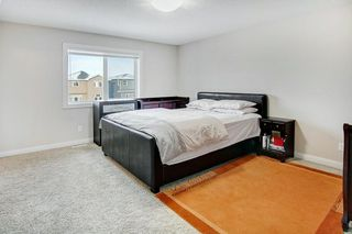 Photo 15: 52 REDSTONE Drive NE in Calgary: Redstone Detached for sale : MLS®# C4281360