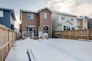 Photo 29: 52 REDSTONE Drive NE in Calgary: Redstone Detached for sale : MLS®# C4281360