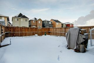 Photo 30: 52 REDSTONE Drive NE in Calgary: Redstone Detached for sale : MLS®# C4281360