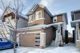 Photo 32: 52 REDSTONE Drive NE in Calgary: Redstone Detached for sale : MLS®# C4281360