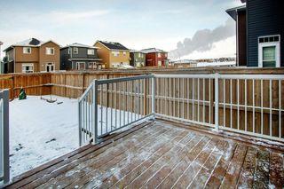 Photo 31: 52 REDSTONE Drive NE in Calgary: Redstone Detached for sale : MLS®# C4281360