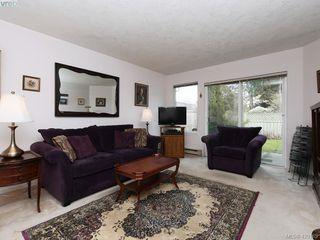 Photo 3: 13 2669 Shelbourne Street in VICTORIA: Vi Jubilee Row/Townhouse for sale (Victoria)  : MLS®# 420165