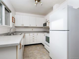 Photo 8: 13 2669 Shelbourne Street in VICTORIA: Vi Jubilee Row/Townhouse for sale (Victoria)  : MLS®# 420165