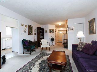 Photo 4: 13 2669 Shelbourne Street in VICTORIA: Vi Jubilee Row/Townhouse for sale (Victoria)  : MLS®# 420165