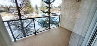 Photo 24: 209 8956 156 Street in Edmonton: Zone 22 Condo for sale : MLS®# E4191469