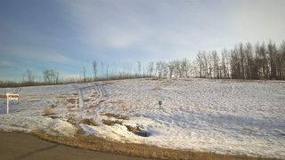 Photo 6: 63 25527 Twp Road 511A Road: Rural Parkland County Rural Land/Vacant Lot for sale : MLS®# E4191643