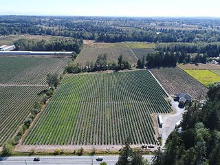 Photo 18: 22926 40 Avenue in Langley: Campbell Valley House for sale : MLS®# R2484965