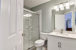 Photo 34: 12714 Douglasview Boulevard SE in Calgary: Douglasdale/Glen Detached for sale : MLS®# A1052479