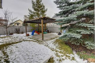 Photo 43: 12714 Douglasview Boulevard SE in Calgary: Douglasdale/Glen Detached for sale : MLS®# A1052479
