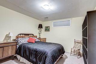 Photo 42: 12714 Douglasview Boulevard SE in Calgary: Douglasdale/Glen Detached for sale : MLS®# A1052479