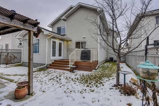 Photo 45: 12714 Douglasview Boulevard SE in Calgary: Douglasdale/Glen Detached for sale : MLS®# A1052479