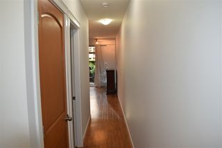 """Photo 13: 123 8288 207A Street in Langley: Willoughby Heights Condo for sale in """"YORKSON CREEK"""" : MLS®# R2420811"""