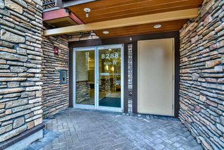 """Photo 3: 123 8288 207A Street in Langley: Willoughby Heights Condo for sale in """"YORKSON CREEK"""" : MLS®# R2420811"""