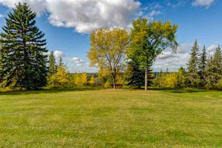 Photo 40: 9009 SASKATCHEWAN Drive in Edmonton: Zone 15 House for sale : MLS®# E4182572